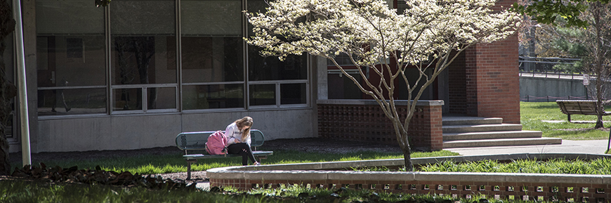 A student sitting beside a blooming tree on campus.