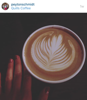 Photo of late from Quills coffee shop