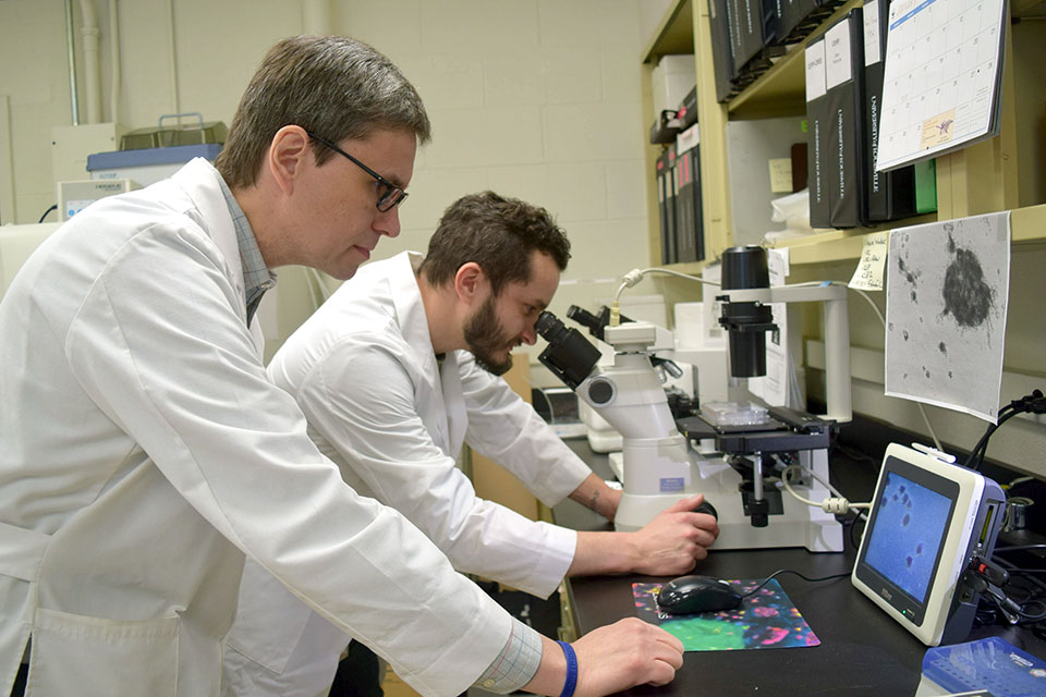 Crespo Lab Photo