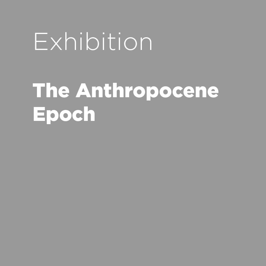 The Anthropocene Epoch