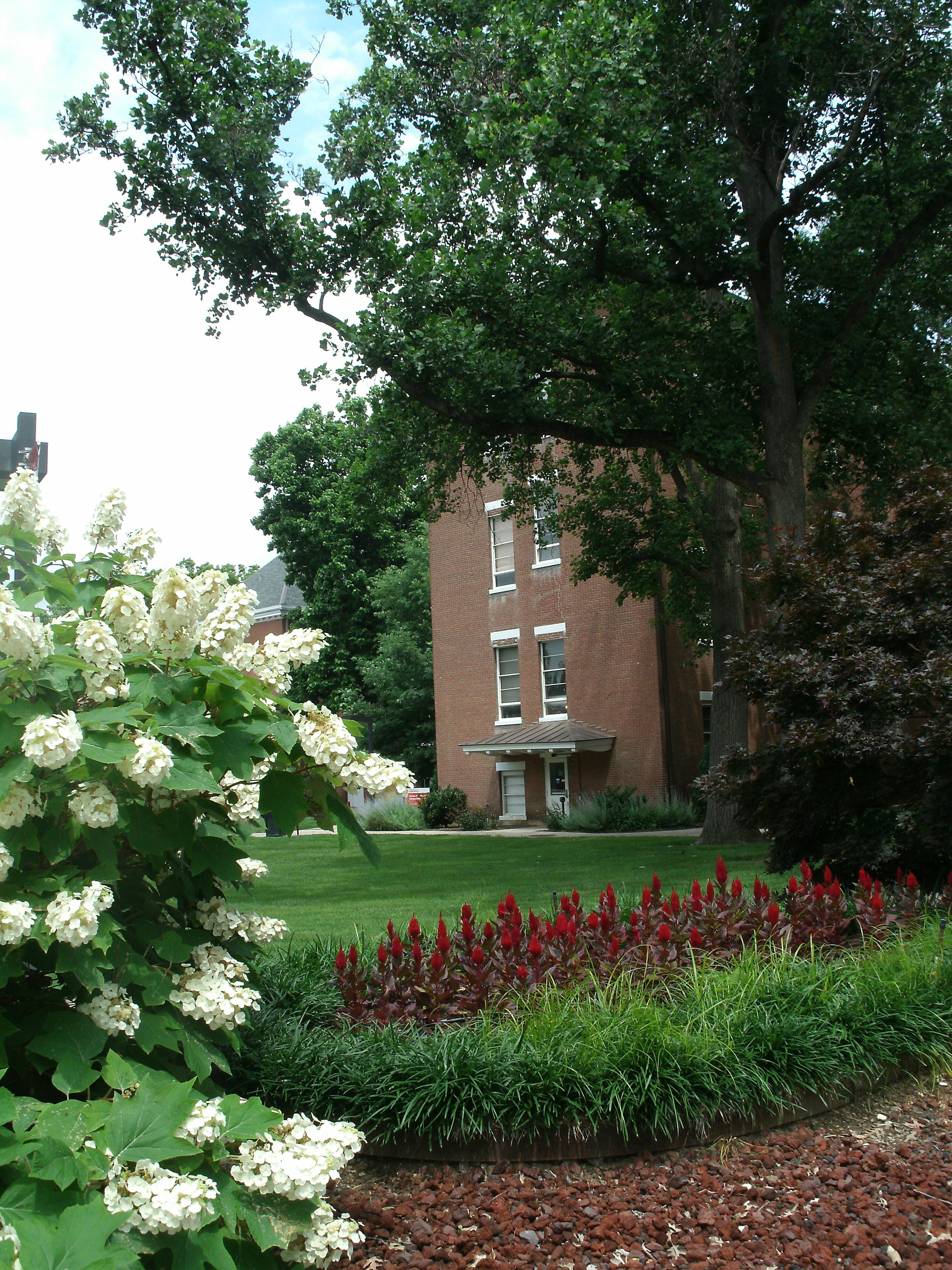 Gardiner Hall back door with flowers