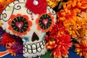 Students celebrate Day of the Dead downtown and on campus