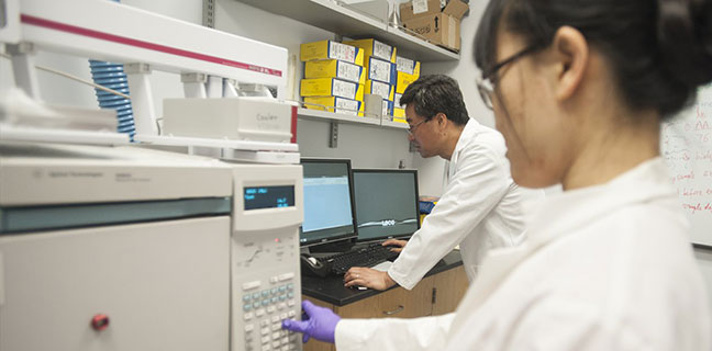 male and female scientist working in lab together