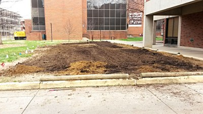 The success of any garden depends on its soil! Tilling compost into the hard claysoil.