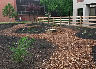 First set of plants are in place and the garden gets off to a good start.  April 26,2016.
