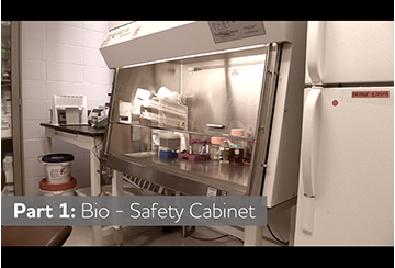 Link to Biosafety Cabinets video
