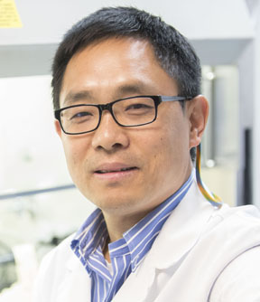 Image of Dr. Huizhi Wang, PhD - Oral Immunology Infectious Diseases - University of Louisville School of Dentistry