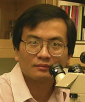 Image of Dr. Jiaiang Ding, PhD - Oral Immunology Infectious Diseases - University of Louisville School of Dentistry
