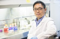 Wang earns grant to study disease that affects half of U.S. adults