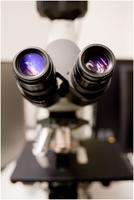 Photo of microscope in the pathology laboratory
