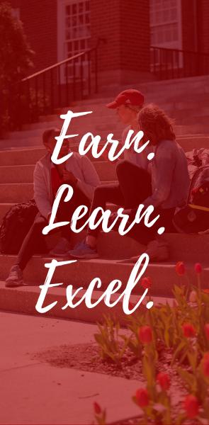 Earn, Learn Excel