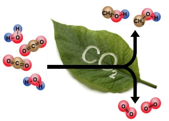Carbon Dioxide Reduction