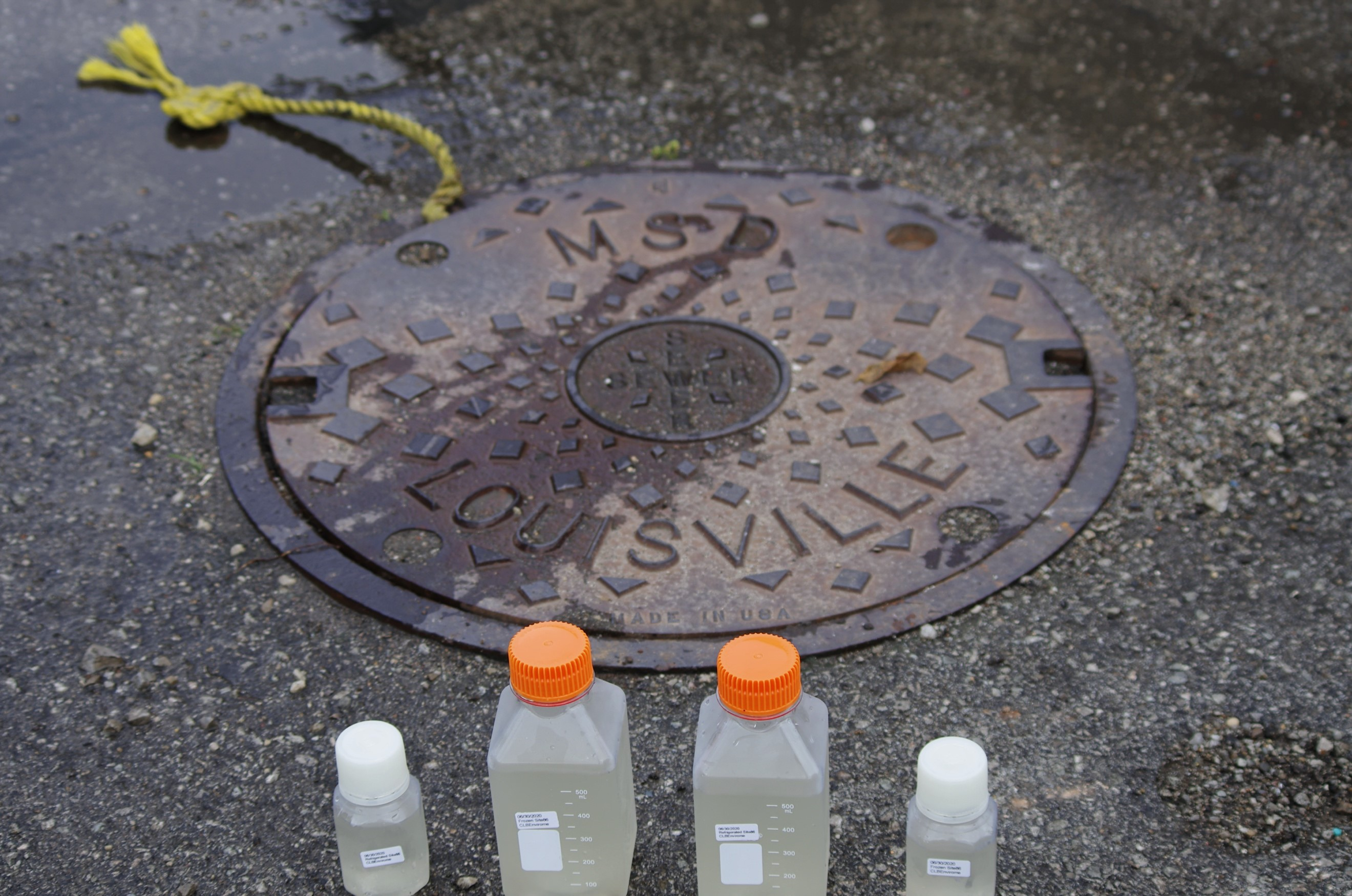Samples with a manhole in the background