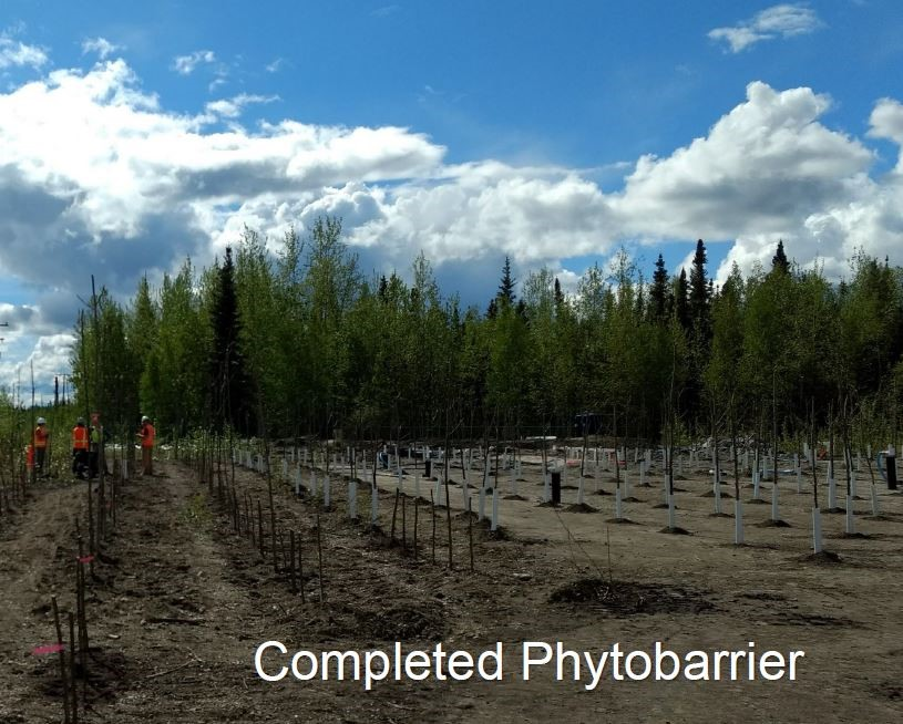 A completed phytobarrier