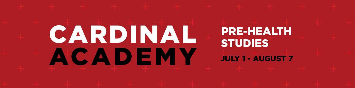 Cardinal Academy Banner