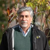 Jafar Hadizadeh