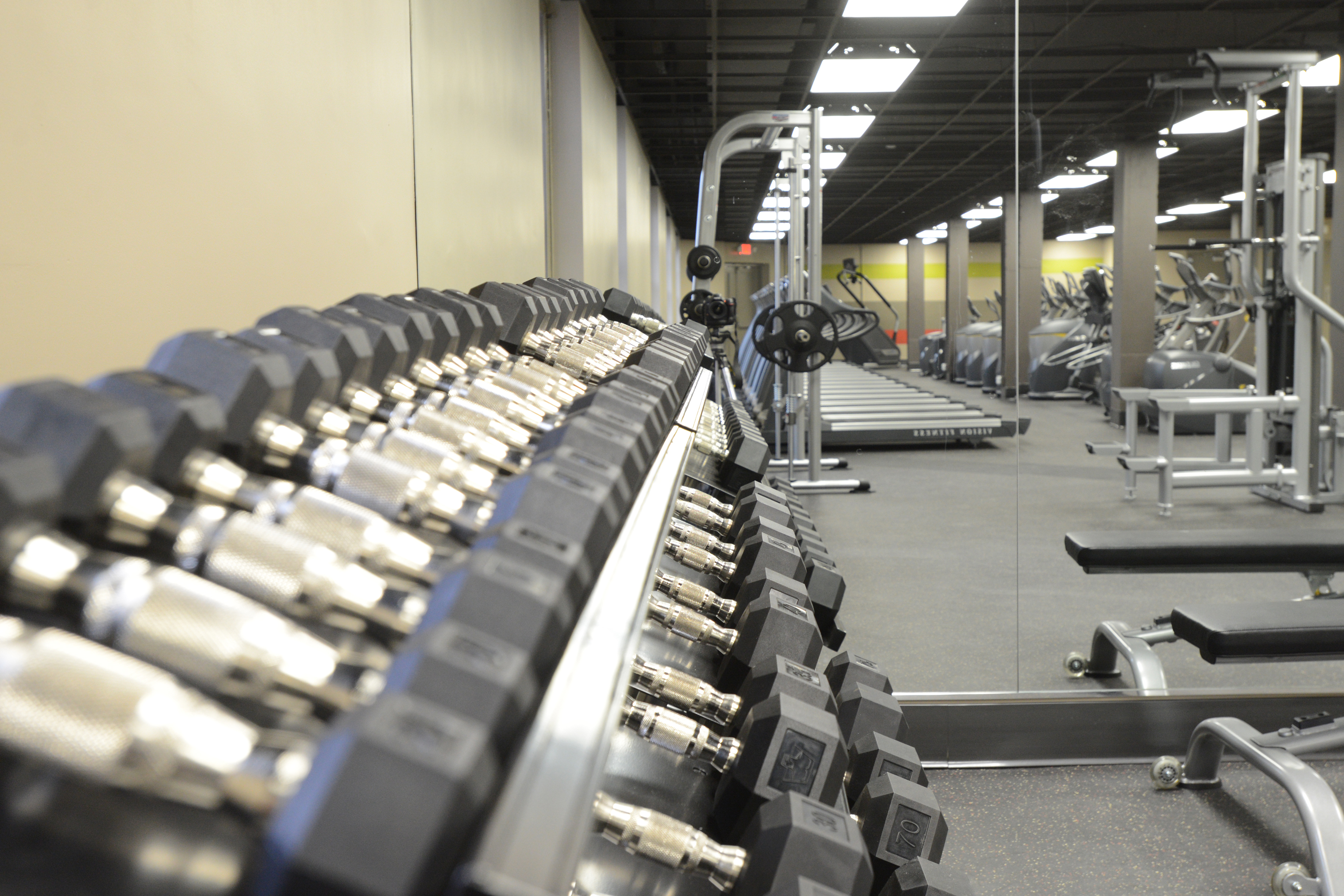 Rack of Weights in Fitness Center