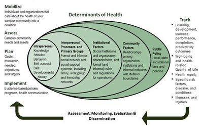 nested circles list determinants of health and path of assessment, monitoring, evaluation and dissemination
