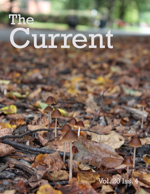 Cover image of The Current, the Honors newsletter, shows a close up shot of wild mushrooms growing above a pile of dead leaves.