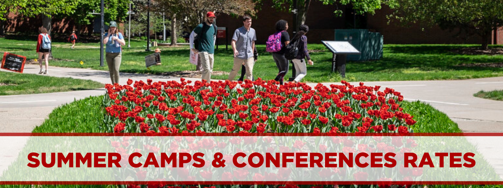 summer camps and conferences rates. photo of flowers on campus