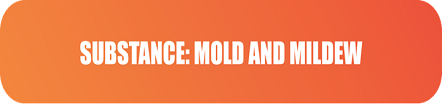Substance Mold and Mildew
