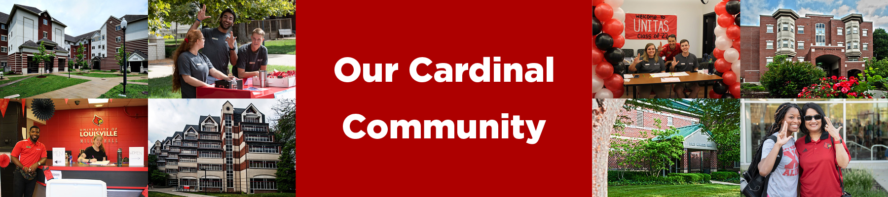 our cardinal community