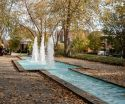 picture of fountain with fall leaves