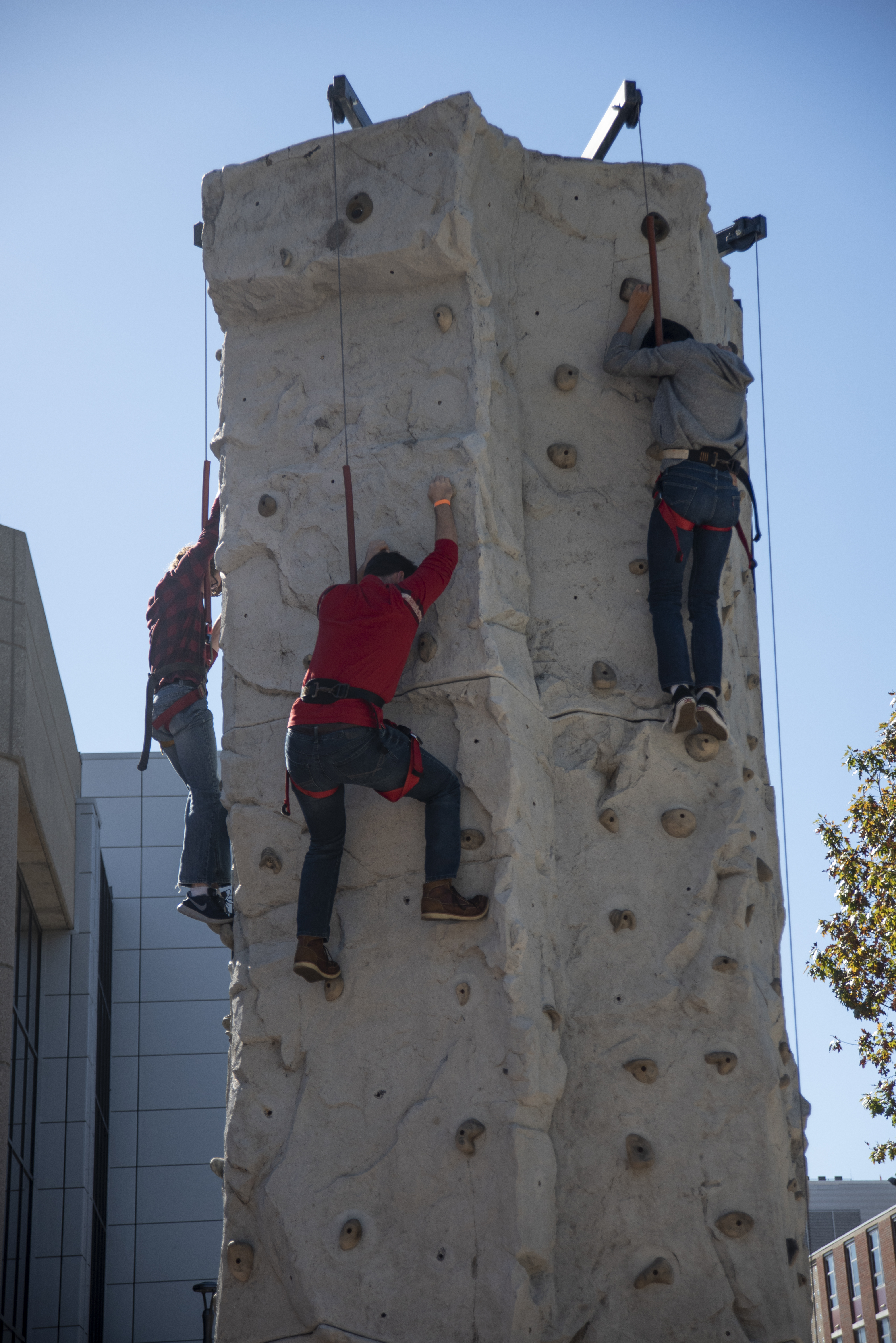 people on a climbing wall