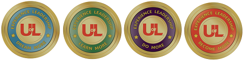 Excellence in leadership to dream more, learn more, do more and become more