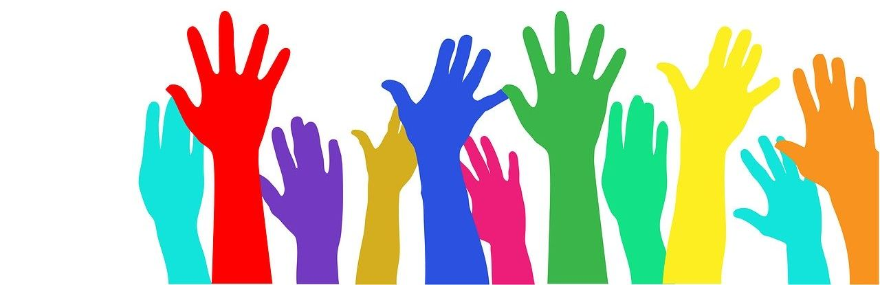 multi-color hands raised to be counted