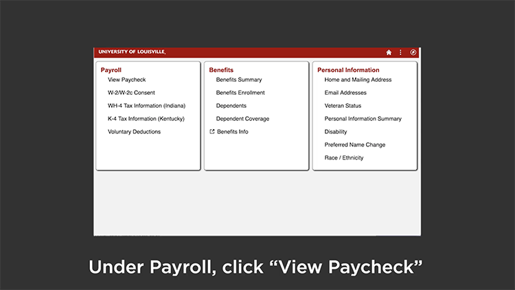 View your Paycheck video screenshot