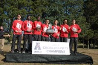 Stewart ('15), cross country team earn conference, regional honors