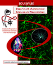 2013 Brochure about the Department of Anatomical Sciences and Neurobiology