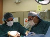 Pain Fellowship — School of Medicine University of Louisville