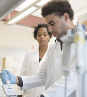 Training the next generation of cancer researchers