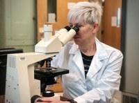 UofL research could eliminate dangerous side effects of gene therapy delivery