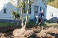 UofL researchers find more health benefits of living in a greener environment