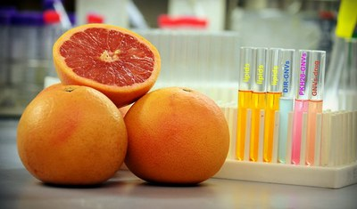 UofL scientists uncover how grapefruits provide a secret weapon in medical drug delivery