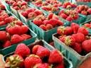 Gray Street Farmers Market returns May 19