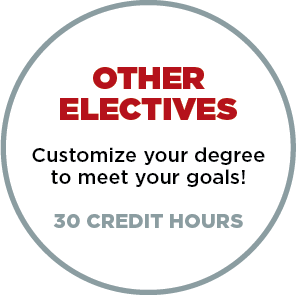 Other Electives - Customize your degree to meet your goals - 30 Credit Hours