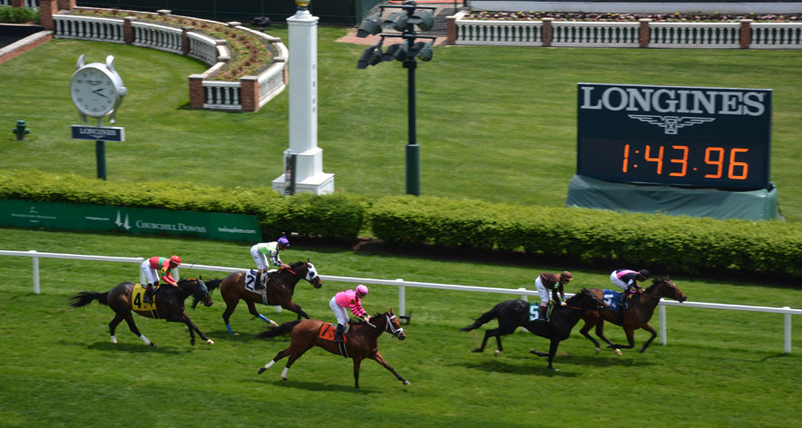 Online learning  - Online Horse Racing Industry Business Certificate