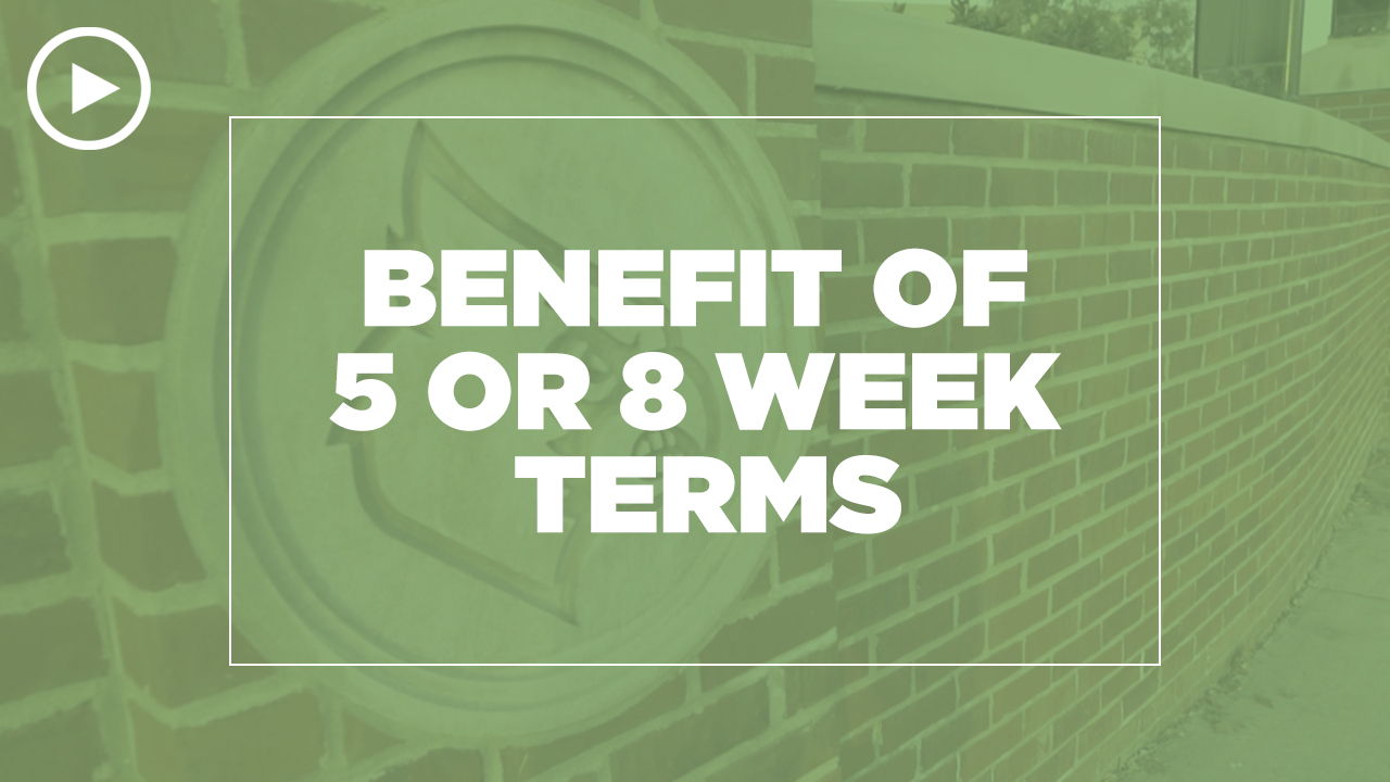 Online learning video - What are the benefit of 5 or 8 week terms?