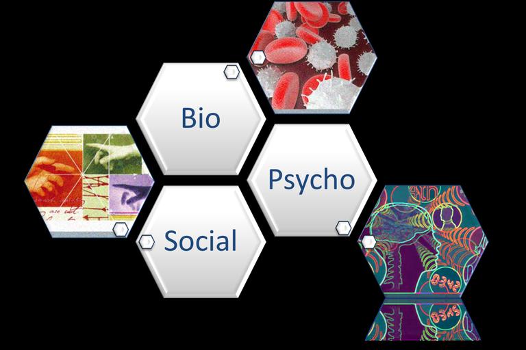 biopsychosocial reflect