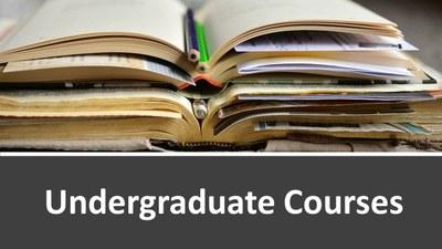 Undergraduate Courses image