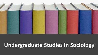 Undergraduate Studies in Sociology image 2