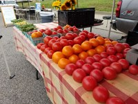 Gray Street Farmers Market Launches Crowdfunding Campaign to Benefit SNAP Recipients