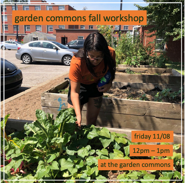 Garden Commons fall workshop announcement showing a person tending a raised bed garden