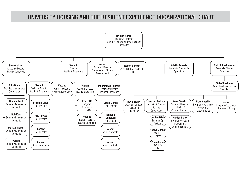 University of Louisville Campus Housing Organizational chart