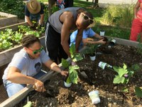 Garden Commons Workday