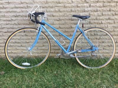 Ecolympics 2020 Prize Bike